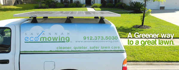 Savannah Lawn Care Lawn Care Mowing Service For